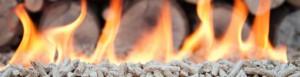 tec_biomasa