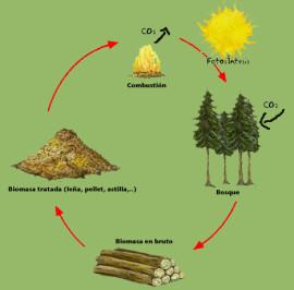 por_que_biomasa